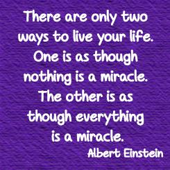 Albert Einstein Miracle Dr Lori Todd